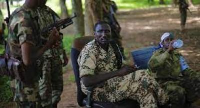 Centrafrique : Le géant français Castel accusé de financer les rebelles de l'UPC pour protéger « ses intérêts »