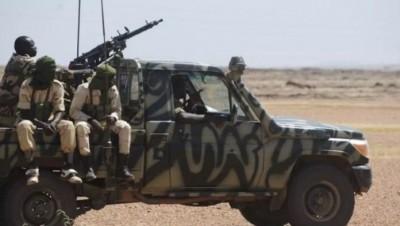 Niger : L'armée inflige de lourdes  pertes à Boko Haram  à Baroua