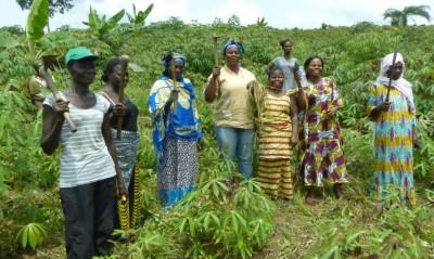 Côte d'Ivoire : La FAO annonce des projets pour les coopératives et les petits exploitants agricoles