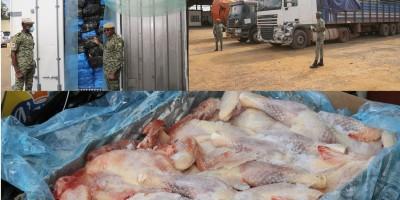 Côte d'Ivoire :   Adzopé, 3.678 cartons de poulets congelés d'environ 37 tonnes saisis par les Douanes Ivoiriennes