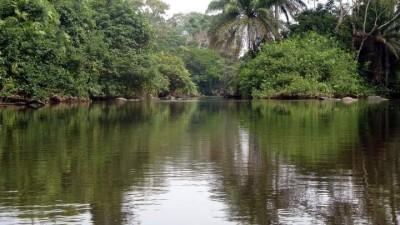 Côte d'Ivoire : Duekoué, au cours d'une traversée une pirogue chavire, 07 fillettes p...