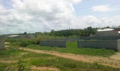 Côte d'Ivoire : Songon-Kassemblé, plus d'une cinquantaine de militaires retraités men...