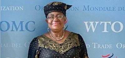 Nigeria :  Spéculations sur Okonjo-Iweala à l'OMC, démenti d'ambition présidentielle pour 2023
