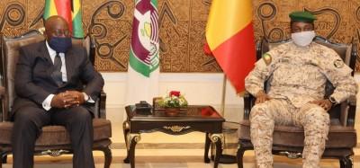 Mali :  Revue de l'évolution du processus de transition