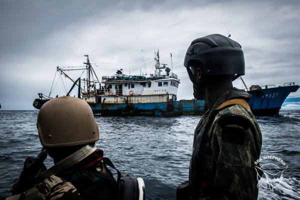 Gabon: Un chalutier arrêté pour braconnage sur la « terre des hippopotames surfeurs »
