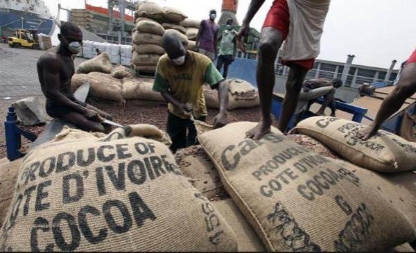 Côte d'Ivoire : Café-cacao, report de la date limite du dépôt des dossiers de demande d'agrément pour la campagne 2019-2020