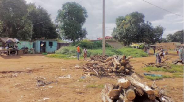 Côte d'Ivoire : Adhésion de 50 chefs au RHDP dans le Gbêkê,  le porte parole desdits chefs révèle: « Je ne suis pas au courant »