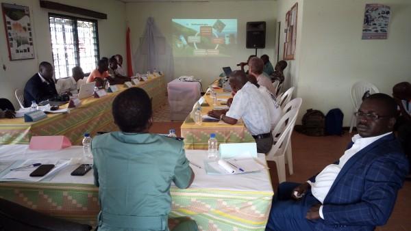Côte d'Ivoire: Préservation du Mon Nimba, les services Guinéens mettent aux arrêts 10 ivoiriens et les remettent à la justice de leur pays
