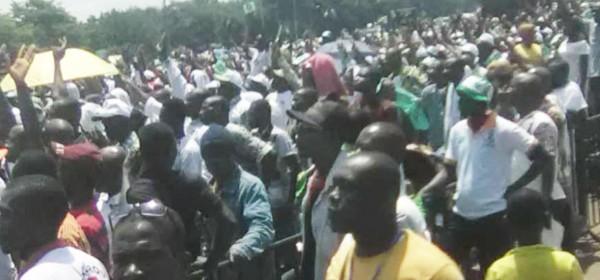 Côte d'Ivoire :  Yamoussoukro, l'avertissement du PDCI-RDA au pouvoir avec la mobilisation exceptionnelle de ses militants