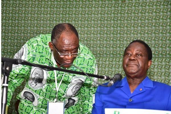 Côte d'Ivoire : Présidentielle 2020, voici comment le candidat  du PDCI sera choisi  à la convention  prévue en juin