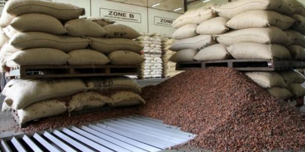 Côte d'Ivoire : Campagne intermédiaire de cacao, le Conseil café-cacao fixe le prix du kilogramme de la fève mardi