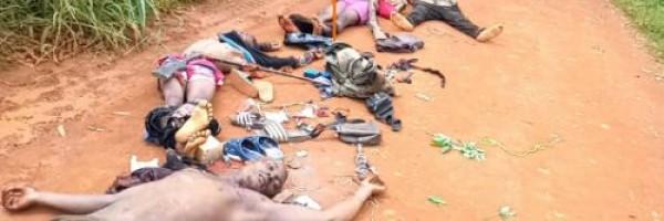 Cameroun : 4 combattants séparatistes tués par les forces armées lors des combats dans le Nord-ouest