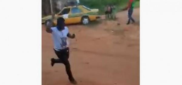 Gambie :  Des abeilles attaquent une rencontre de Barrow