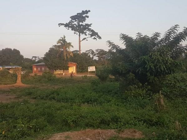 La Côte d'Ivoire, premier pays africain au sous-sol pauvre à dépasser en richesse un pays d'...