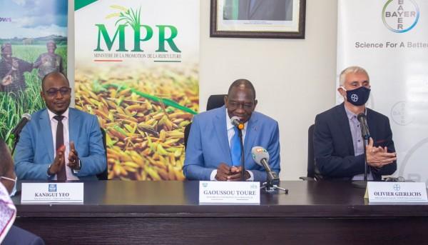 Côte d'Ivoire :  Secteur du riz, deux géants mondiaux s'engagent auprès du gouvernement dans la transformation du riz local en appuyant le secteur privé