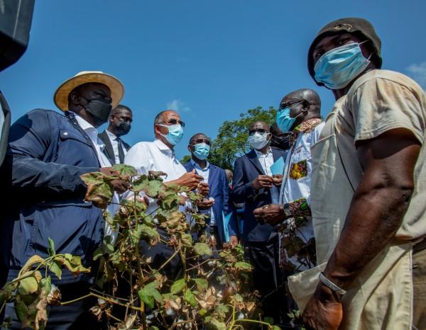 Côte d'Ivoire : Achi dans les plantations de Korhogo pour la vision 2030 d'Alassane Ouattara