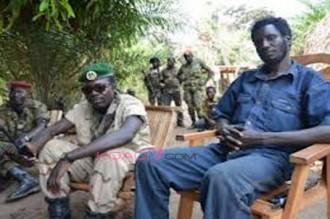 Centrafrique: Les rebelles sÂ'emparent des villes de Gambo et Bangassou