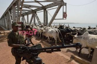 Mali : Les islamistes du Mujao détruisent un pont reliant le Mali au Niger