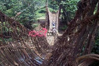 Côte dÂ'Ivoire : Le pont de liane de Lieupleu à nouveau fonctionnel