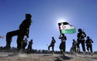 TRIBUNE ALGERIE : Le rapport dÂ'Amnesty 2012 et le vrai visage du polisario