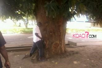 COTE D'IVOIRE: On urine partout !