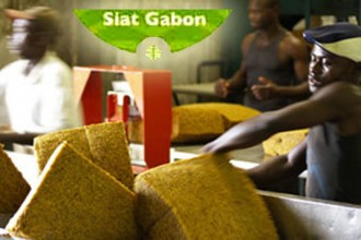 GABON: L'Etat gabonais et Olam investissent 183 millions de dollars dans une plantation de caoutchouc