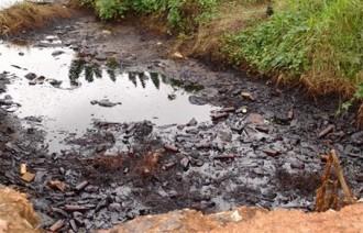 Rapports des experts sur les Déchets toxiques, serions nous tous en danger?