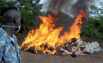 BENIN: 5 tonnes de Cannabis détruites à Lokossa et Abomey