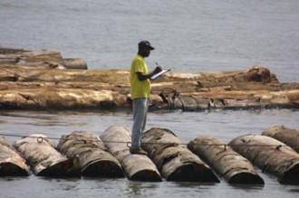 Gabon, le marasme économique en 2008, dévoilé dans le tableau de bord de lÂ'économie.