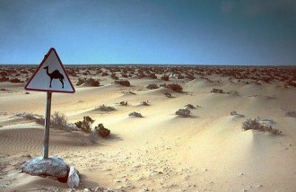 TRIBUNE : Sahara/ONU : La sangsue et le parasite prédateur à découvert