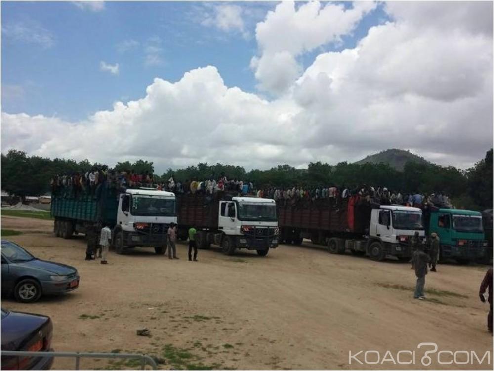 Cameroun - Nigeria : Lutte contre le terrorisme, Abuja mécontent de l'expulsion de ses 12 000 ressortissants