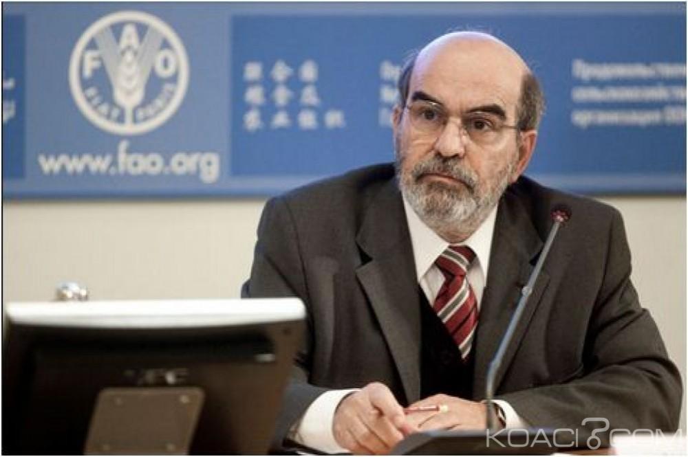 Cameroun : Le directeur général de la FAO attendu à Yaoundé ce jeudi