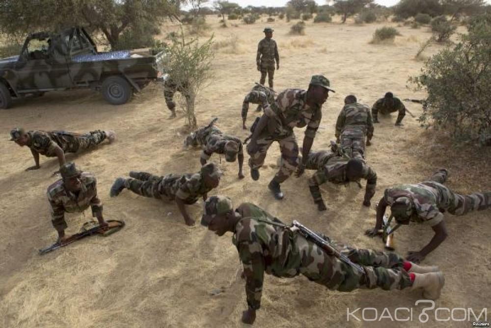Niger: Cinq morts dont deux soldats dans une attaque présumée de Boko Haram