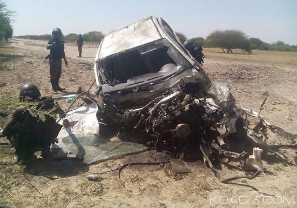 Cameroun : Une vingtaine de combattants de Boko Haram tués dans des combats à l'Extrême-Nord