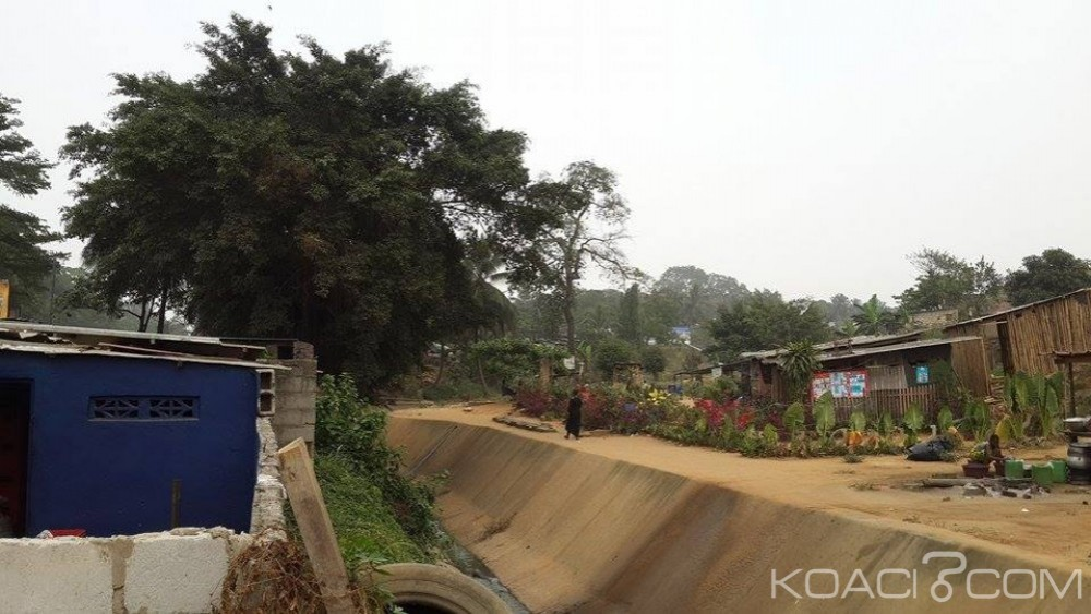 Côte d'Ivoire: Deux corps sans vie découverts dans un ravin