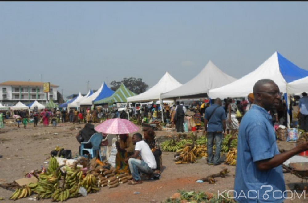 Cameroun: Au moins 11 milliard de FCFA pour  le programme Agropoles en 2016