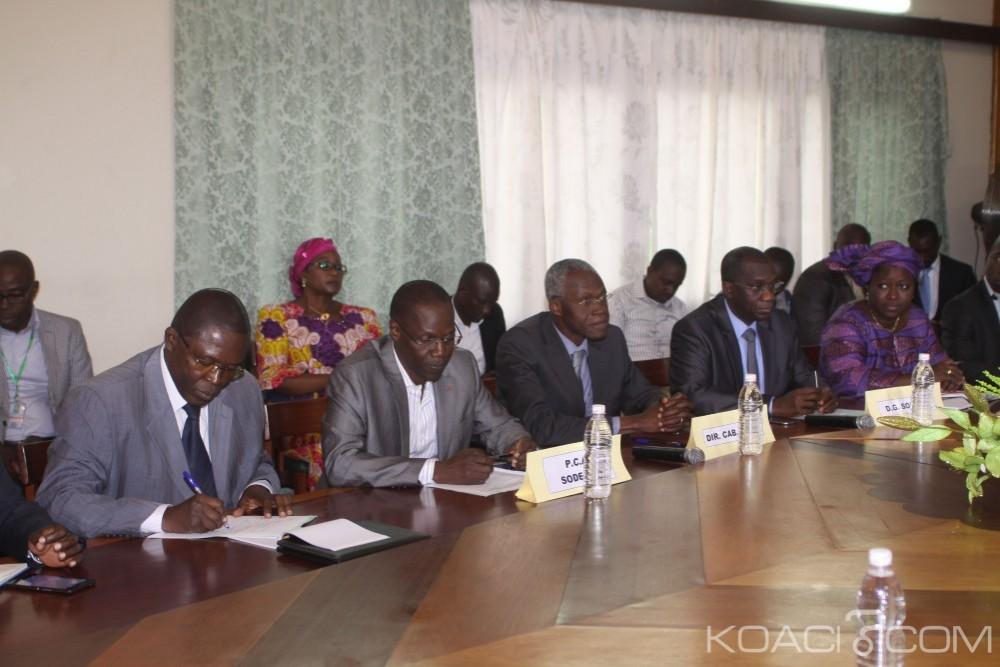 Côte d'Ivoire: En voie de disparition, 4 accords-cadres signés pour la sauvegarde de la forêt ivoirienne