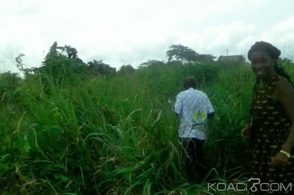 Côte d'Ivoire: Tellement de broussaille qu'on ne retrouve plus les tombes de ses parents