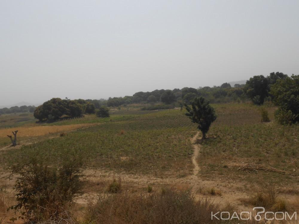 Cameroun: Réforme foncière, l'UE va investir plus de 2 milliards FCFA sur 5 ans pour le projet «Landcam»