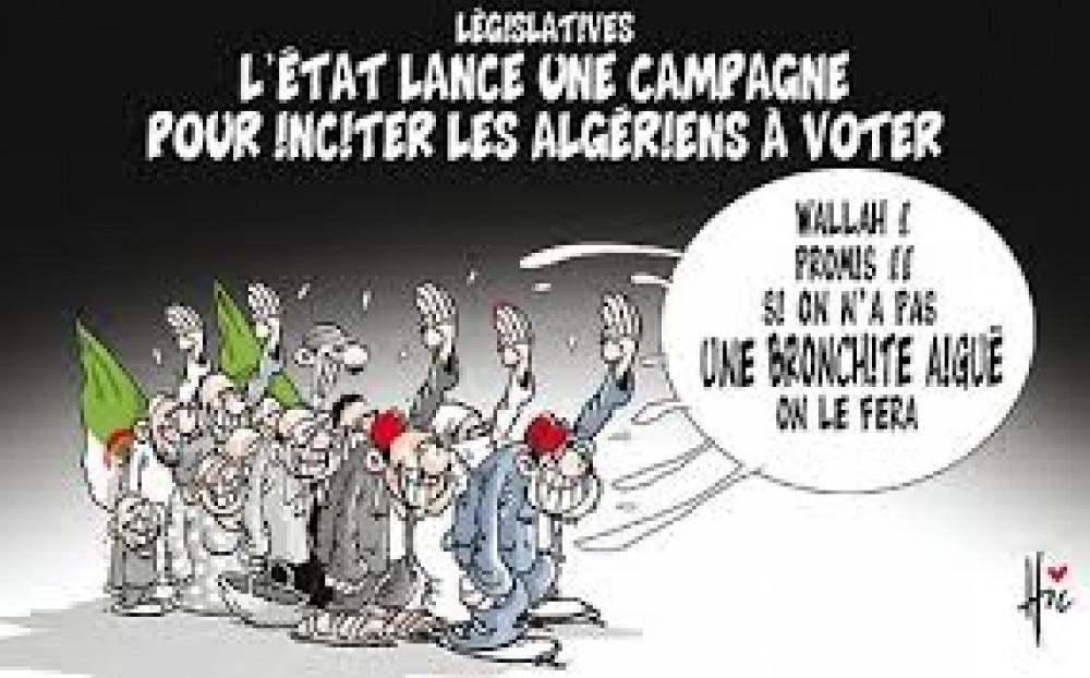 Koacinaute:  Algérie : un scrutin législatif à l'ombre de l'ignorance
