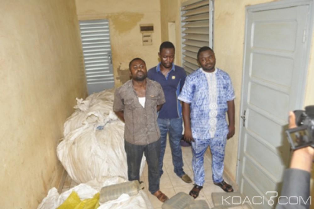 Burkina Faso:  718 kg de drogue, estimée à près de 50 millions, saisis