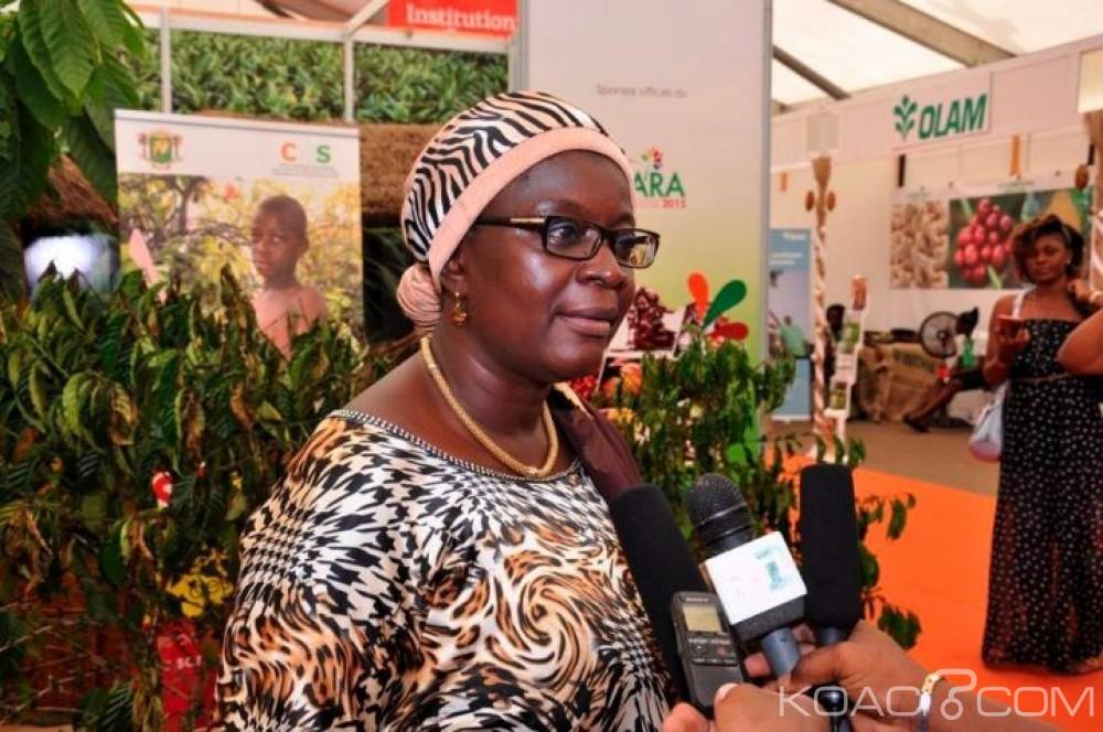 Côte d'Ivoire: Le Conseil Café-Cacao et l'Etat traduits en justice, l'affaire renvoyée au 16 mai prochain, la loi des «acheteurs» à Guiberoua