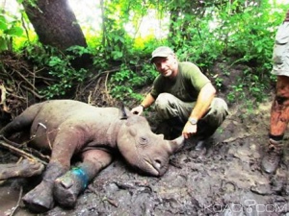 Rwanda: Un défenseur des animaux tué par un rhinocéros  dans un parc