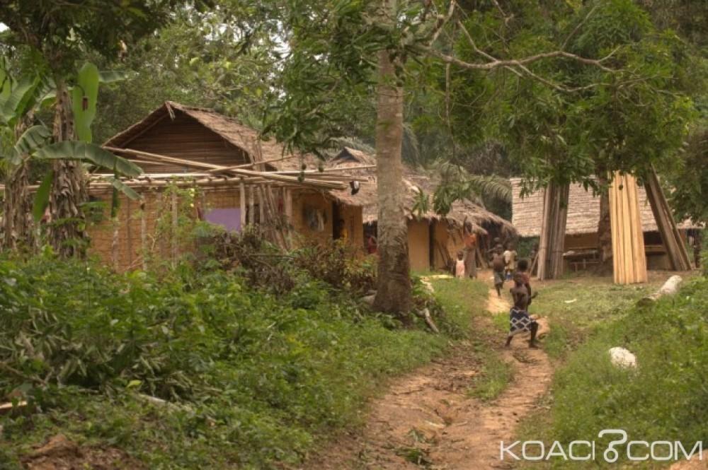 Côte d'Ivoire: Abidjan annonce le lancement officiel de l'initiative Cacao et Forêts