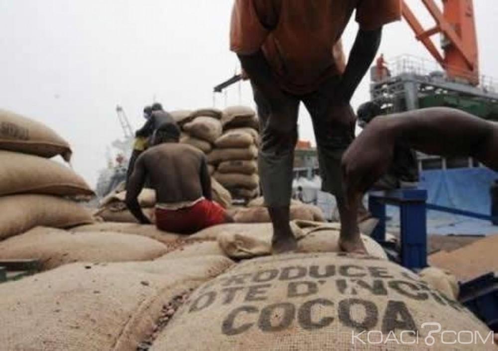 Côte d'Ivoire: Café-cacao, ouverture des demandes des projets de certification au titre de la campagne 2017-2018, à compter du 12 juillet 2017