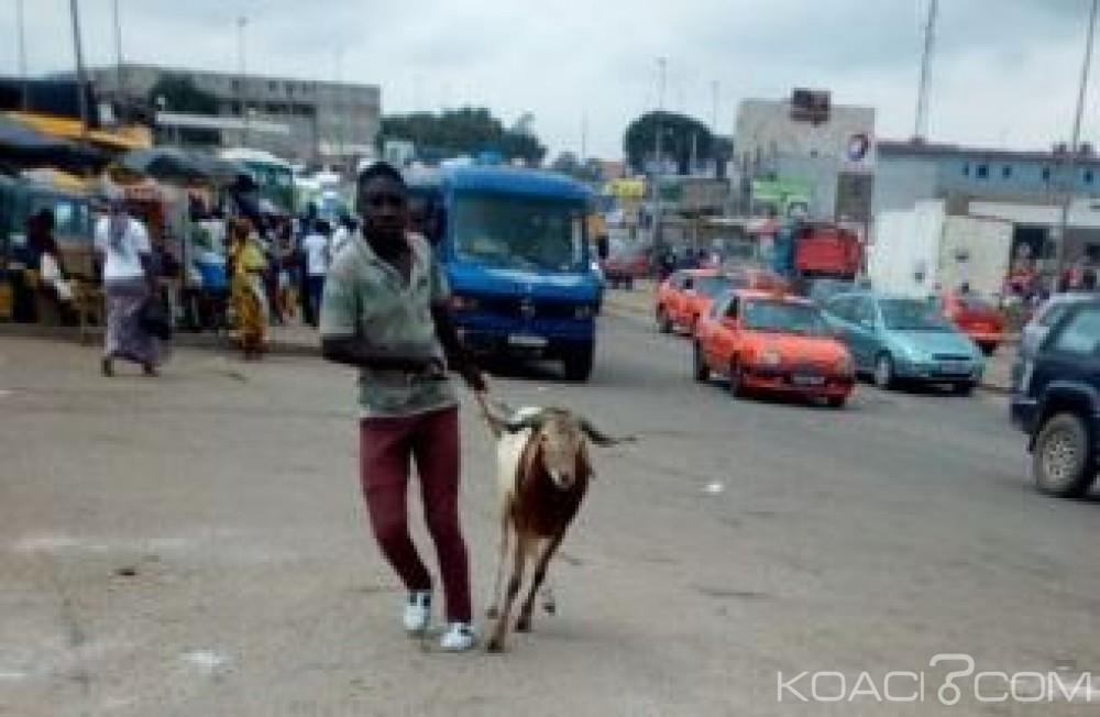 Côte d'Ivoire: A deux jours de la tabaski, voies embouteillées, gares routières prises d'assaut