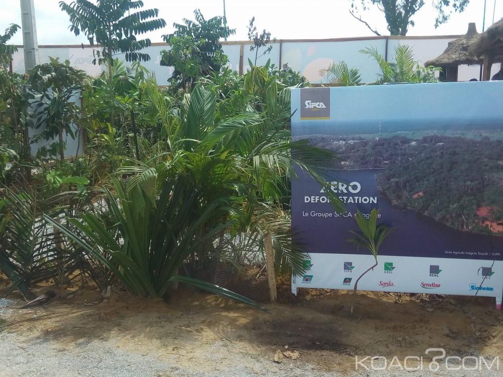 Côte d'Ivoire: SARA, le groupe SIFCA présent avec sa politique zéro déforestation