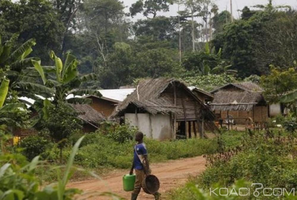 Côte d'Ivoire: Le Gouvernement renonce à l'expulsion des occupants des emprises des forêts classées
