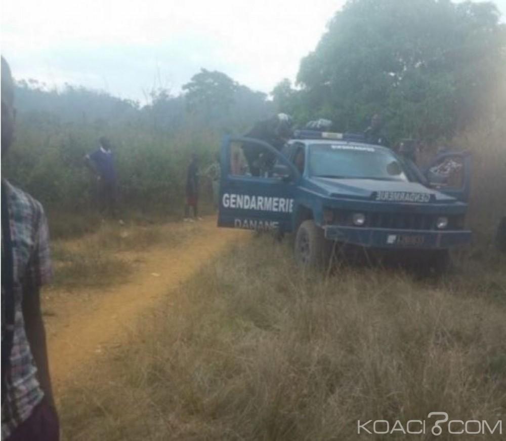 Côte d'Ivoire: Danané, après le conflit foncier entre Yacouba et Lobi, une campagne contre les occupations illicites dans les forêts entamées