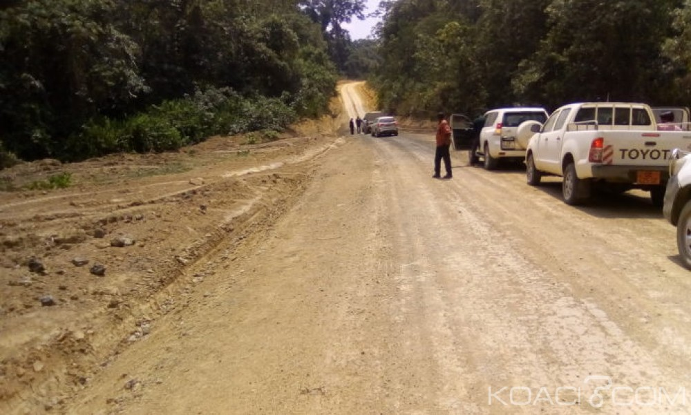 Cameroun-Nigeria: Réouverture sous peu du corridor économique Maiduguri-Mora